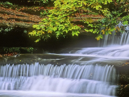 Water Fall nature pictures