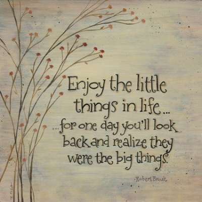 Enjoy the little things in life for one day you'll look back and realize life jealousy quotes