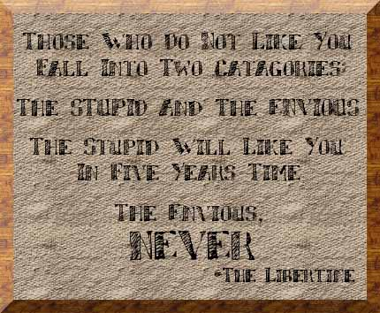 Those who do not like you fall into two categories: the stuupid and the envious. jealousy quotes