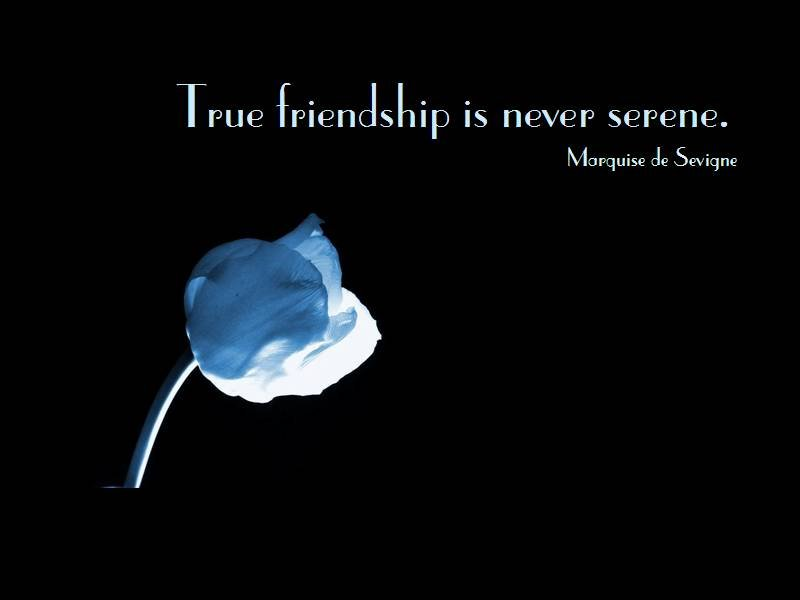 short quotes about friendship and love