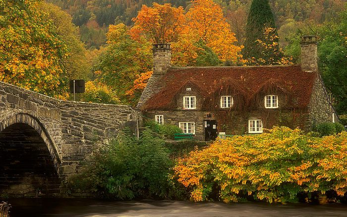 Beautiful House nature pictures