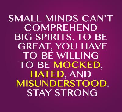 Small minds can't comprehend big spirits. Stay Strong. jealousy quotes