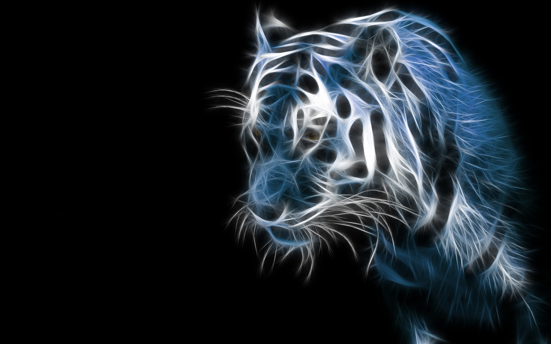 Sketch tiger pictures