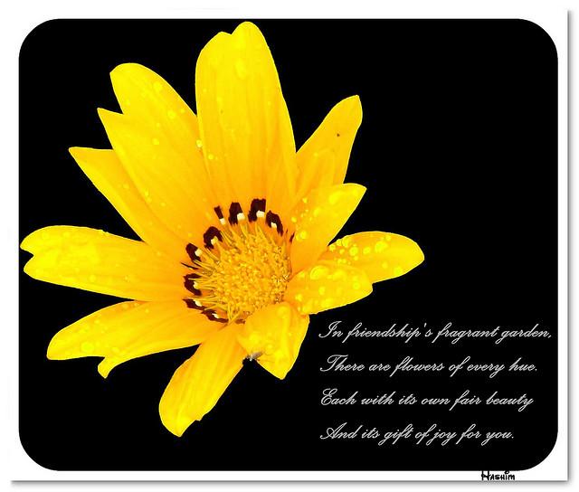 If friendship is a fragrant garden friendship poem