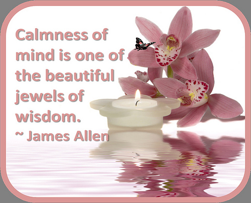 Calmness is one of the beautiful jewels of wisdom daily quotes