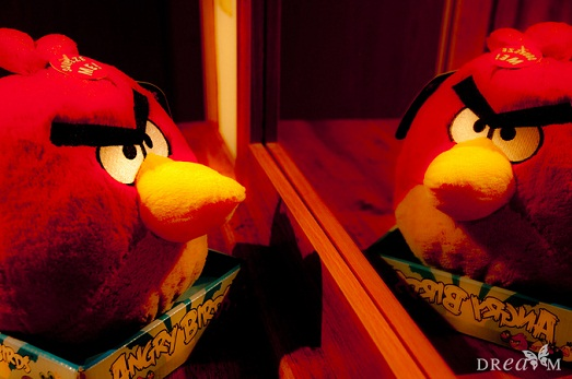 Epic angry bird