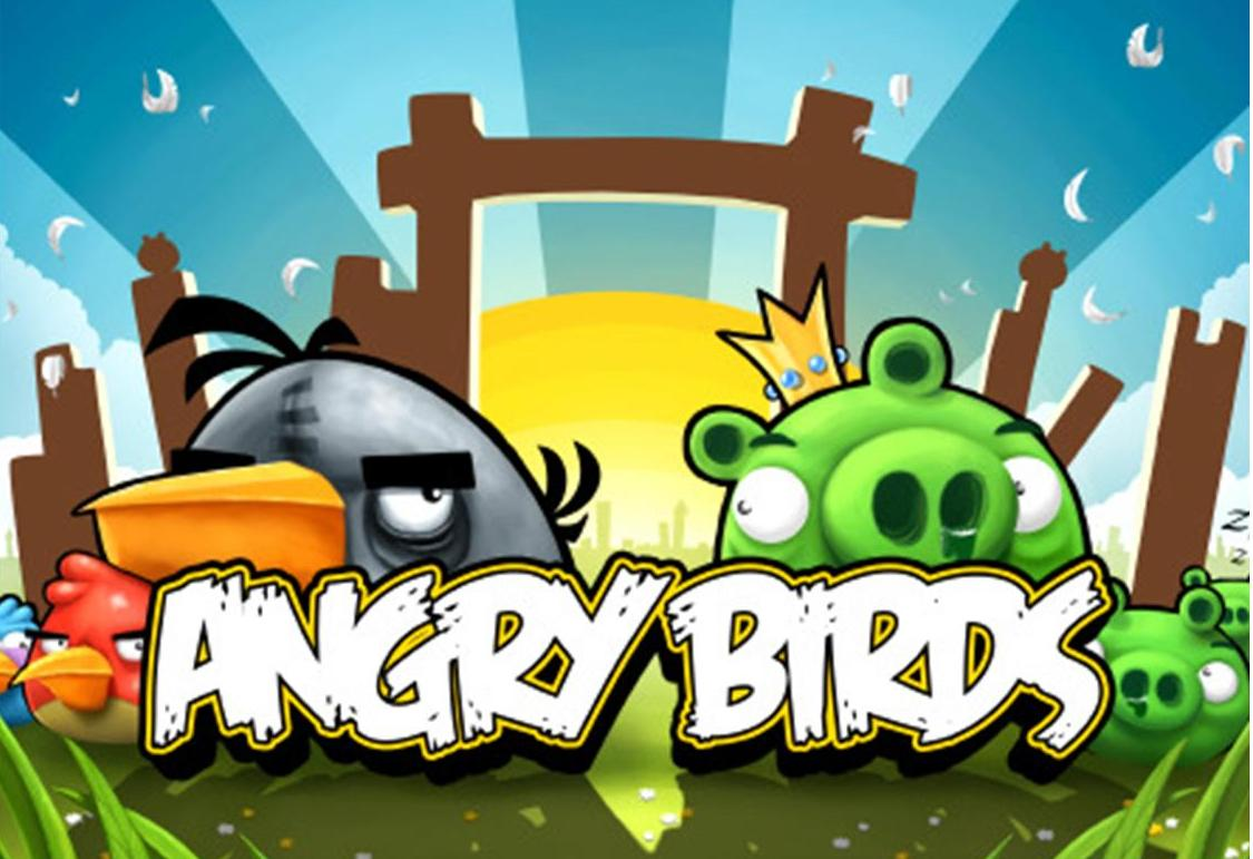 Cute angry bird pictures