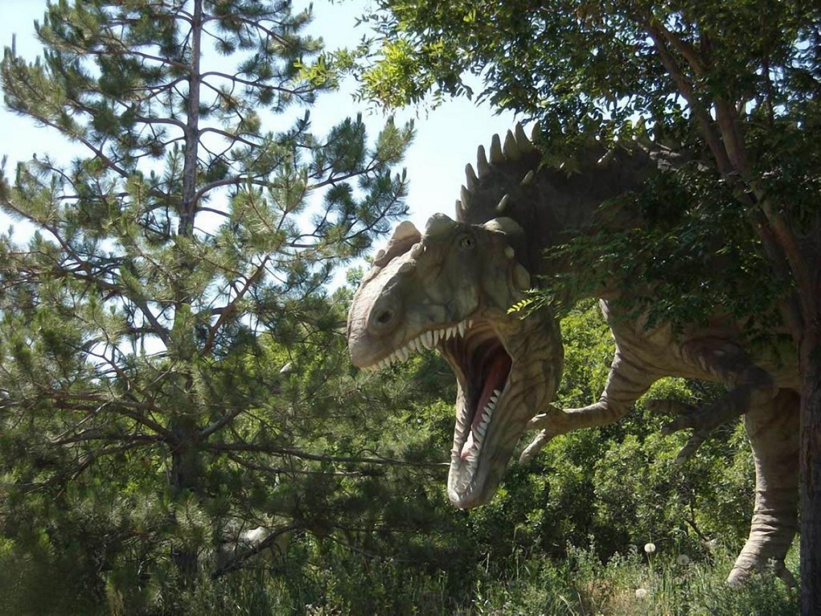 Rare dinosaur images