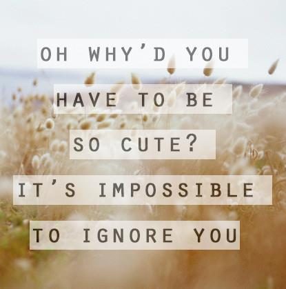 So Cute daily quote