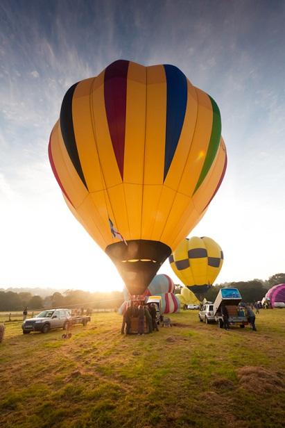 Yellow hot air balloons