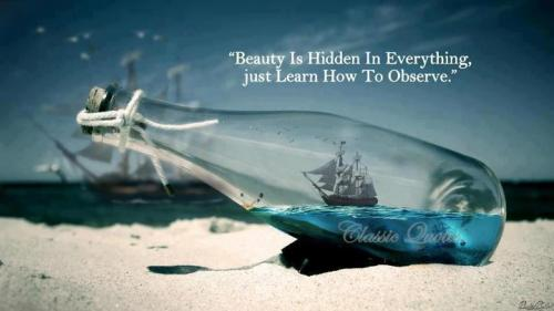 Beauty Is Hidden to everything beauty quotes