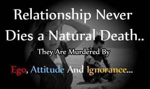 Relation Never Dies beauty quotes