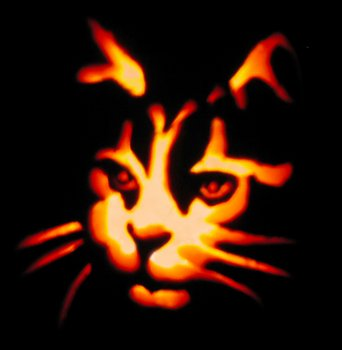 Halloween Face halloween pictures