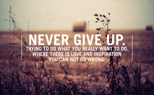 Never Give Up good quotes