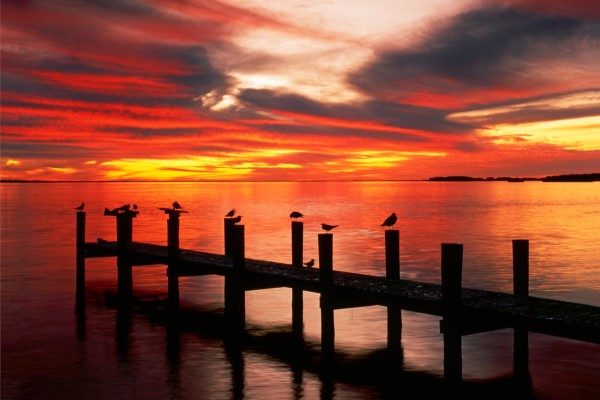 Deep Sunset Photography Examples