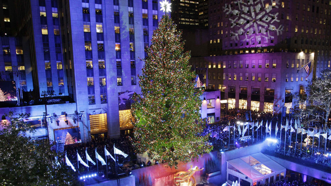 Hot Looking Christmas Tree Free Download