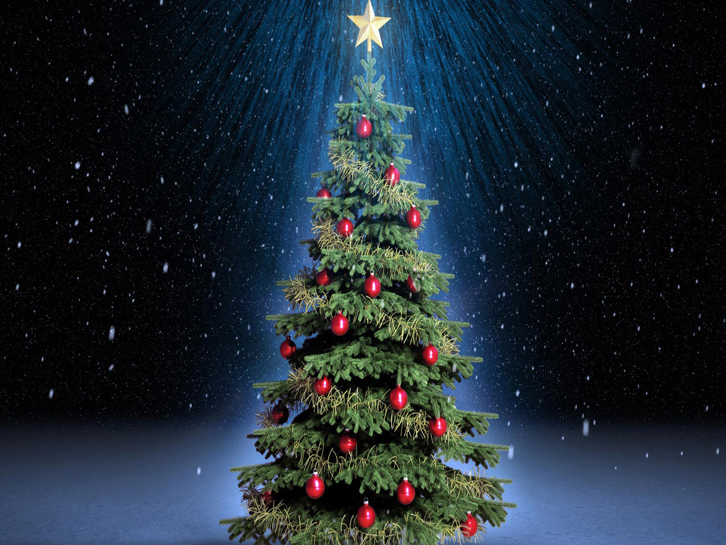 20 hot looking christmas tree for A beautiful christmas tree