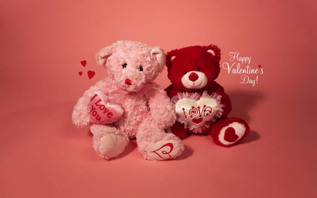 Teddy Bears valentine's day gift